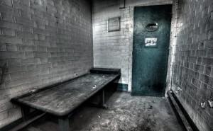 000ad7c 690   300x185 - Евгений Сигал и его цыпа сядут надолго из-за экологических преступлений?