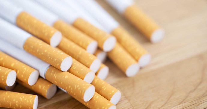 Местный налог на табачные изделия табачные изделия подлежат возврату или нет