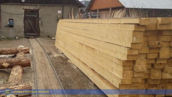 СБУ блокировала незаконный экспорт древесины на миллионы гривен